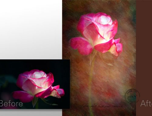 Applying an Oil Paint Effect: A Snap Art Workflow with Denise Ippolito