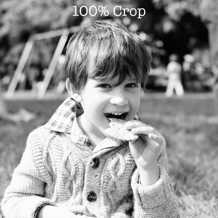 Kodak tri-x 400 scan 100% crop