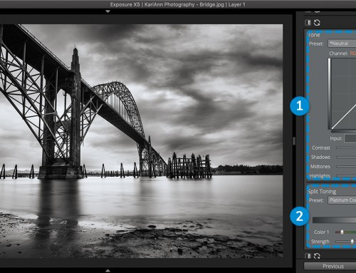 Tone Curve Panel User Guide