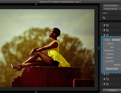 Vignette User Guide