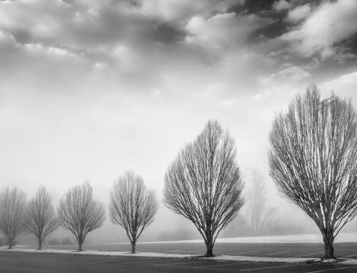 Configurable Keyboard Shortcuts